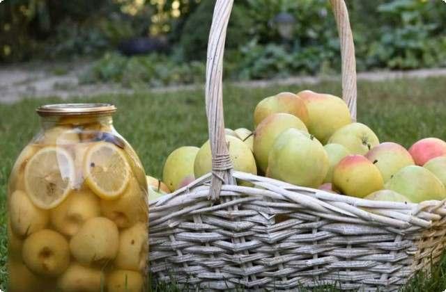 Компот из сливы и яблок без стерилизации на 3-литровую банку на зиму - простой пошаговый рецепт