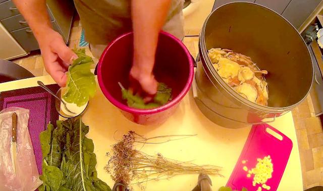 Грибы волнушки холодной засолки на зиму - рецепт с пошаговыми фото