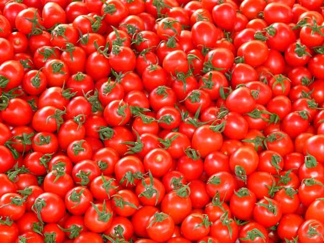 Вяленые помидоры без холодильника на зиму - рецепт с пошаговыми фото