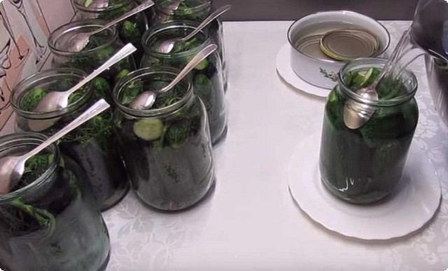Соленые огурцы на зиму - 25 рецептов хрустящих огурцов в банках