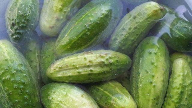 Малосольные хрустящие огурцы на зиму в банках - 5 рецептов с фото пошагово