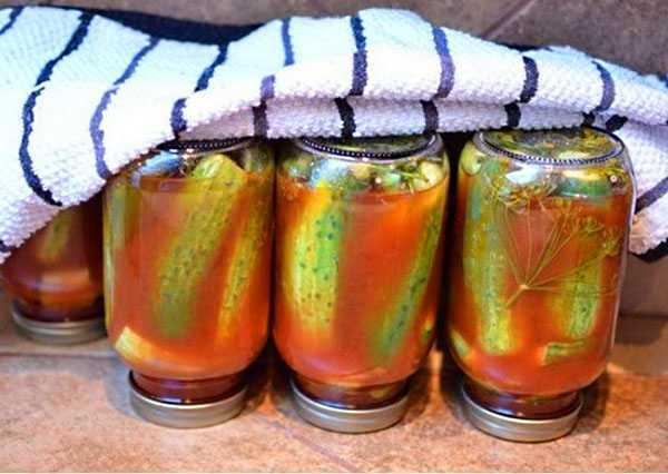 Тертые огурцы на зиму - очень вкусный рецепт с фото