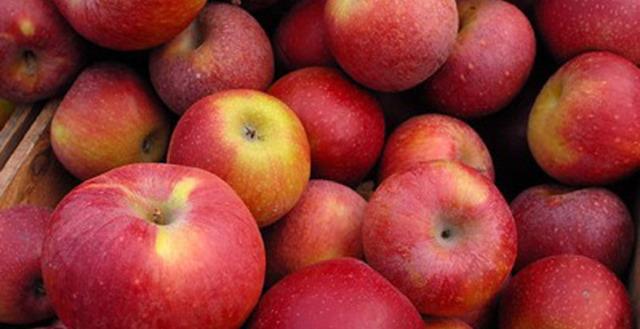 Пюре из яблок без стерилизации с сахаром на зиму - рецепт с пошаговыми фото