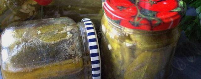 Маринованные огурцы с горчицей на зиму - 35 рецептов хрустящих огурцов в банках