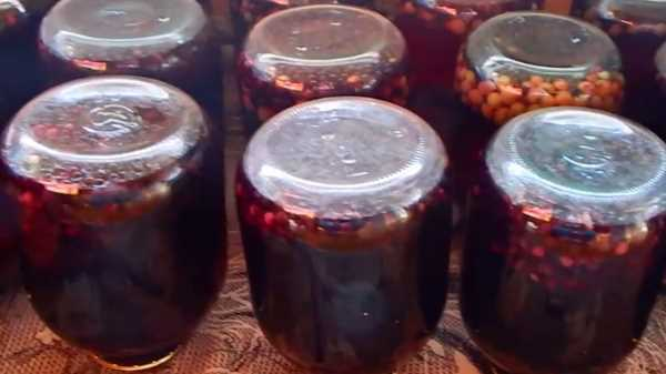 Компот из ирги и вишни на зиму - рецепт с пошаговыми фото