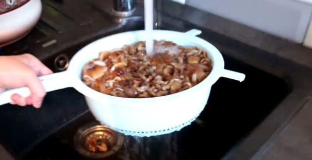 Опята маринованные на зиму - 5 рецептов с фото пошагово