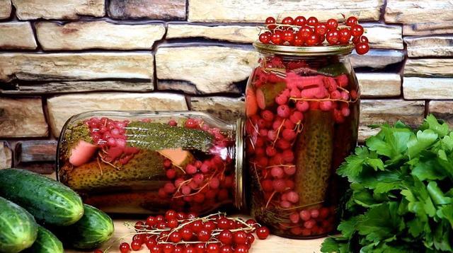 Огурцы кольцами на зиму - 33 рецепта маринованных огурцов с пошаговыми фото