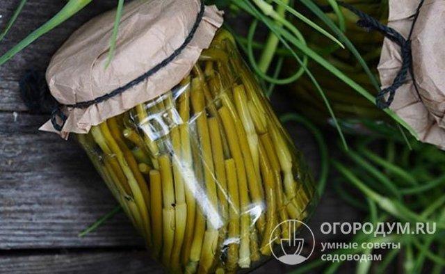 Стрелки чеснока через мясорубку на зиму - рецепт приготовления с пошаговыми фото