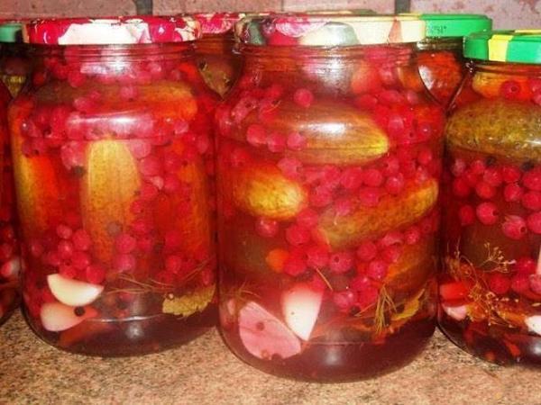 Огурцы на зиму без сахара - 20 рецептов хрустящих маринованных огурцов в банках