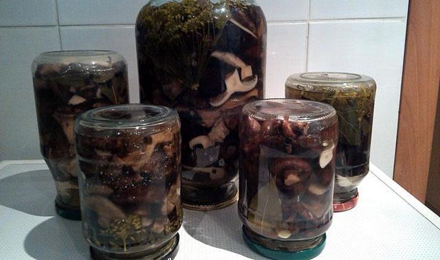 Черные грузди на зиму - 11 рецептов в банках холодным, горячим способом с пошаговыми фото