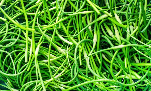 Салат из стрелок чеснока на зиму - рецепт с пошаговыми фото