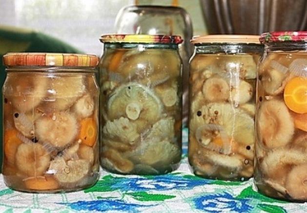 Как солить белянки на зиму - рецепт с пошаговыми фото