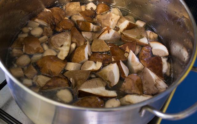 Как солить подберезовики на зиму - рецепт приготовления с пошаговыми фото