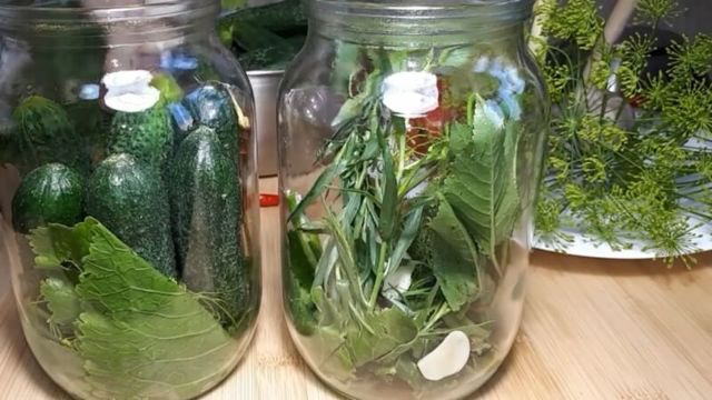 Засолка огурцов в 3-х литровых банках на зиму - 18 рецептов хрустящих огурцов с пошаговыми фото