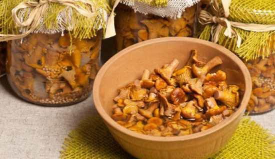 Солянка с лисичками на зиму - рецепт приготовления с пошаговыми фото