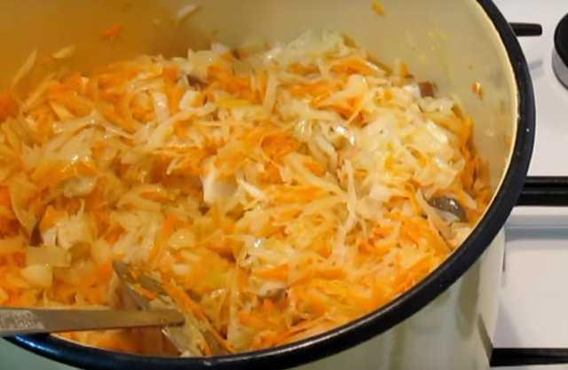 Солянка из ранней капусты на зиму - рецепт с пошаговыми фото