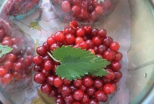 Компот из вишни на зиму - 63 рецепта простых и вкусных с пошаговыми фото