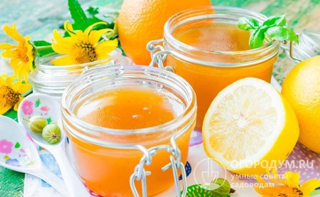 Крыжовник с апельсином на зиму - 19 рецептов заготовок с пошаговыми фото