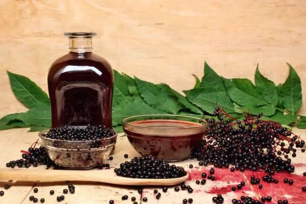 Компот из красной черемухи на зиму - рецепт приготовления с пошаговыми фото