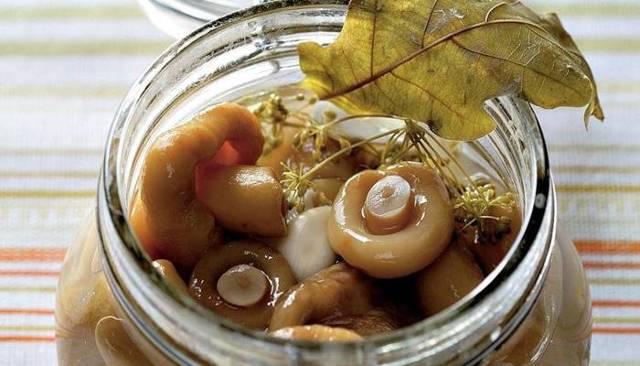 Соленые грузди с укропом на зиму - рецепт с пошаговыми фото